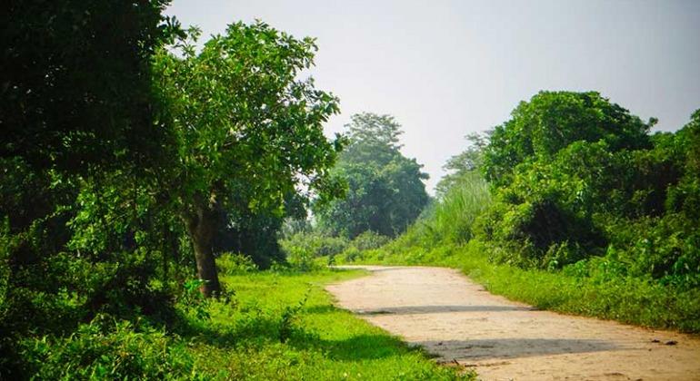 বানিয়াচং হবিগঞ্জ ভ্রমণ গাইড