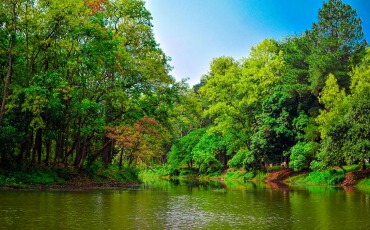 ভাওয়াল জাতীয় উদ্যান গাজীপুর
