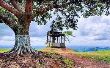 মারায়ন তং বান্দরবান
