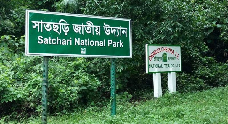 satchari-national-park-vromonguide