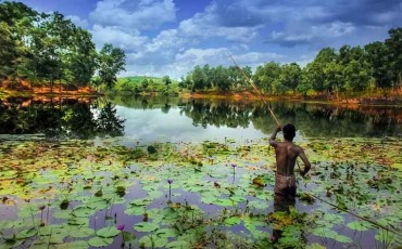 Madhabpur Lake and Tea Estate Sylhet
